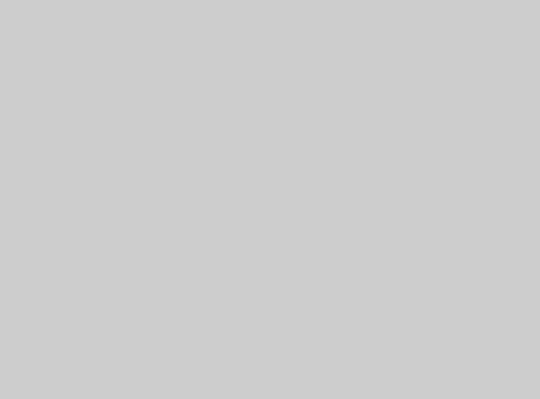 Pellentesque rhoncus