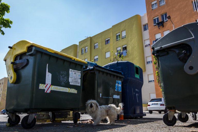 Festival de Arte Urbana Muro, Bairro Padre Cruz, Fotógrafo diogogarcia.com  Muro, Festival de Arte Urbana 0018 diogogarcia