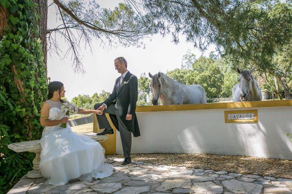 Galeria de Fotografias de Casamentos diogogarcia